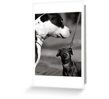 Try me! Greeting Card