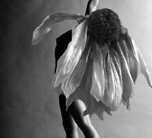 yoga with flower by Oudi Arroni