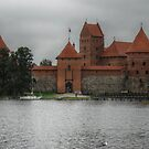 Castle of TRAKAI, gate by Antanas