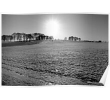 Winter Sun - Temple Newsam, Yorkshire Poster