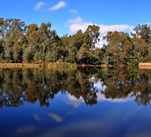 Goulburn River Seymour by Leigh Monk