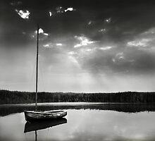 Norfolk Landscapes by Richard Flint