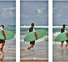Wave Hunter by Stephen Mitchell