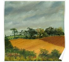 Cornfield Under Brooding Sky Poster
