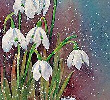 Snowy snowdrops by Ann Mortimer