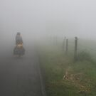 Cyclist into the Fog by deserttrends