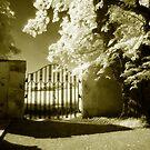 Border Gate by Ethem Kelleci