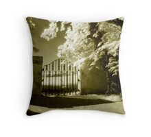 Border Gate Throw Pillow