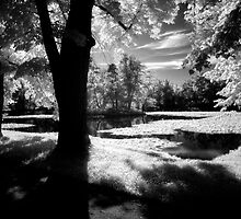 Tranquilty-Castle Park by Ethem Kelleci
