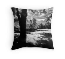 Tranquilty-Castle Park Throw Pillow