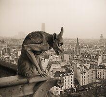 Gárgola Notre Dame París by Raúl Grijalbo