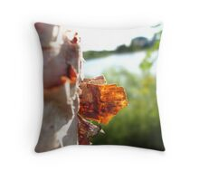A Whisper of Glory Throw Pillow