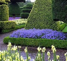 LEVINS HALL TOPIARY GARDEN by Joan Harrison