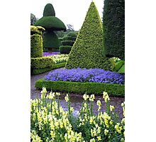 LEVINS HALL TOPIARY GARDEN Photographic Print