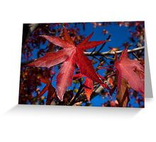 Autumn Blast Greeting Card