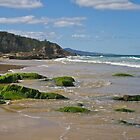 Quarry Beach, Mallacoota, Gippsland, Victoria. by johnrf