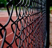 Fences by oxymoronic92