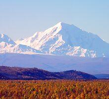 Alaska Range III by Jennifer Murray