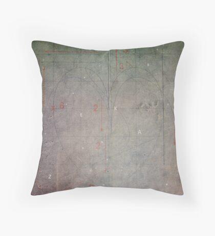 Emotional Algebra Throw Pillow