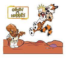 Calvin And Hobbes Cartoon  Photographic Print