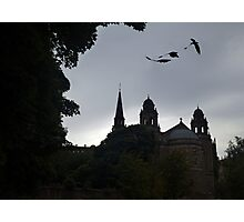 Dragons In Edinburgh Photographic Print