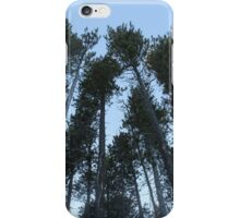 Cypress Hills  iPhone Case/Skin
