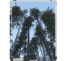 Cypress Hills  iPad Case/Skin