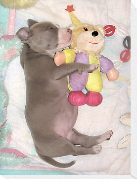 I Love My Stuffy by Ginny York