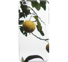 Italian Lemons iPhone Case/Skin