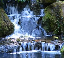 Graceful Waterfall by Pam2t1968