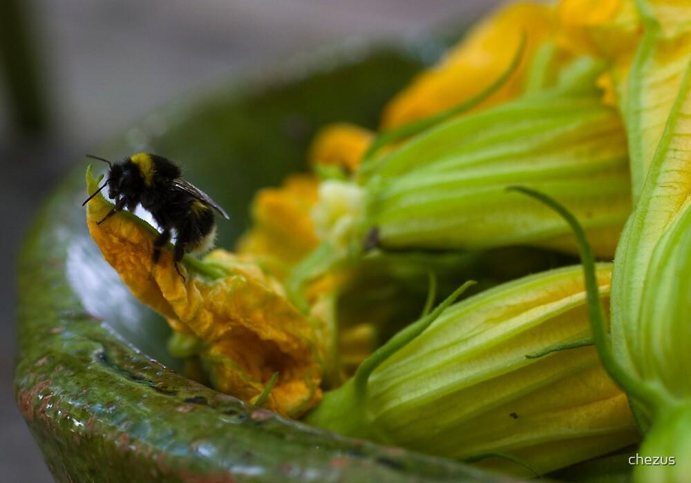 Bee by chezus