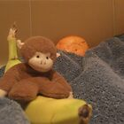 Monkey on a 'banana' boat by Allan  George