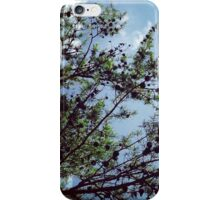Tr Tapestry iPhone Case/Skin