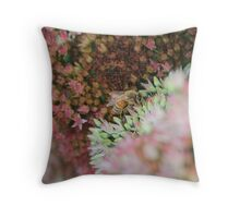 Pollination In Process Throw Pillow
