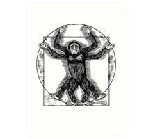 Vitruvian Chimp Art Print