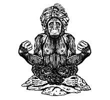 Swami Chimp Photographic Print