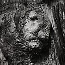 Tree Spirit. 2 by Alex Preiss
