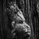 Tree Spirit. 5 by Alex Preiss
