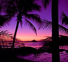 Tropical Island Sunset by Chris Kean