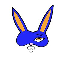 Blue Bunny Photographic Print
