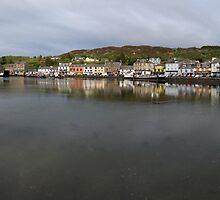 Tarbert Harbour - Panorama by Maria Gaellman