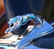 1934 Ford Fordor Greyhound Hood Ornament by aleen