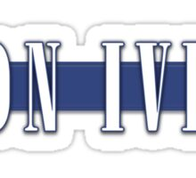 BON IVER - Stripe Logo  Sticker