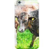 Cows iPhone Case/Skin
