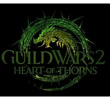 Guild Wars 2 Heart of Thorns Photographic Print