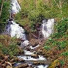 Anna Ruby Falls by ButterflyTrace
