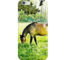 Grazing horses and cows iPhone Case/Skin