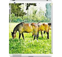 Grazing horses and cows iPad Case/Skin