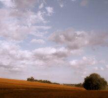 Nebraska Gold by Jing3011