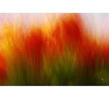 flavorsome Photographic Print